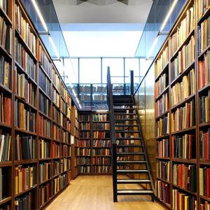 Библиотеки Нестерова
