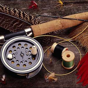 Охотничьи и рыболовные магазины Нестерова