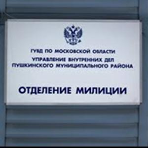 Отделения полиции Нестерова